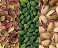 pistachio suppliers